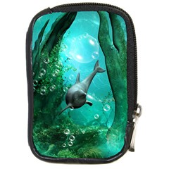 Wonderful Dolphin Compact Camera Cases by FantasyWorld7