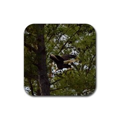 Bald Eagle Rubber Square Coaster (4 Pack)  by timelessartoncanvas