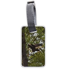 Bald Eagle Luggage Tags (one Side)  by timelessartoncanvas