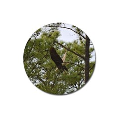 Bald Eagle 2 Magnet 3  (round) by timelessartoncanvas