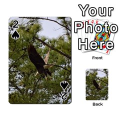 Bald Eagle 2 Playing Cards 54 Designs