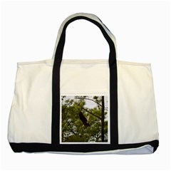 Bald Eagle 2 Two Tone Tote Bag  by timelessartoncanvas