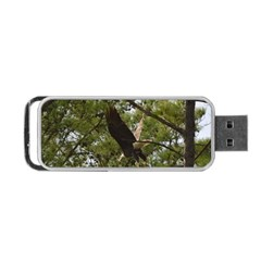 Bald Eagle 2 Portable Usb Flash (two Sides) by timelessartoncanvas