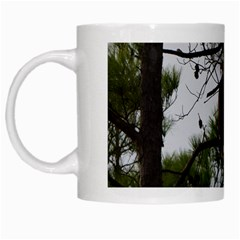 Bald Eagle 3 White Mugs