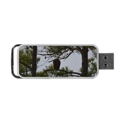 Bald Eagle 4 Portable Usb Flash (two Sides) by timelessartoncanvas