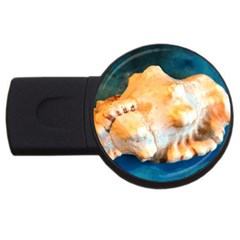 Sea Shell Spiral 2 Usb Flash Drive Round (4 Gb)  by timelessartoncanvas