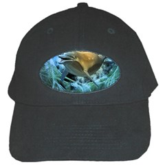 Funny Dolphin In The Universe Black Cap