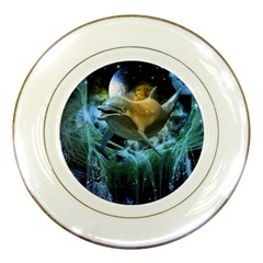 Funny Dolphin In The Universe Porcelain Plates