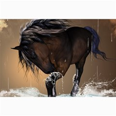 Beautiful Horse With Water Splash Collage 12  X 18  by FantasyWorld7