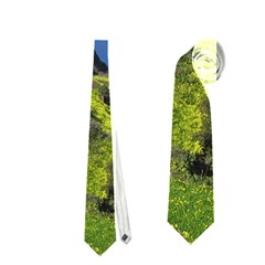 Tenerife 09 Neckties (one Side)  by MoreColorsinLife