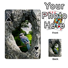 Bird In The Tree 2 Playing Cards 54 Designs  by infloence