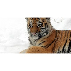 Tiger 2015 0101 You Are Invited 3d Greeting Card (8x4)  by JAMFoto
