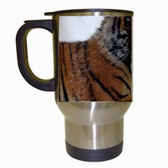 Tiger 2015 0102 Travel Mugs (white) by JAMFoto
