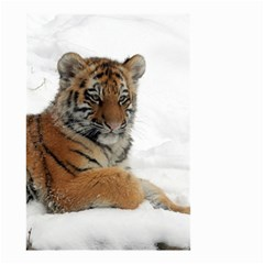 Tiger 2015 0102 Small Garden Flag (two Sides) by JAMFoto