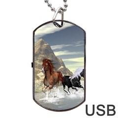 Beautiful Horses Running In A River Dog Tag Usb Flash (two Sides)  by FantasyWorld7