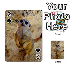 Lovely Meerkat 515p Playing Cards 54 Designs