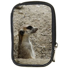 Adorable Meerkat Compact Camera Cases by ImpressiveMoments