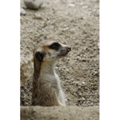 Adorable Meerkat 5 5  X 8 5  Notebooks by ImpressiveMoments