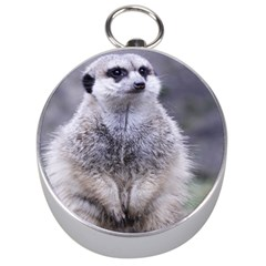Adorable Meerkat 03 Silver Compasses by ImpressiveMoments