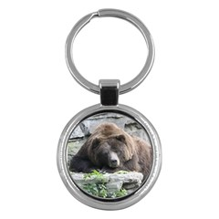 Tired Bear Key Chains (round)