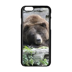 Tired Bear Apple Iphone 6/6s Black Enamel Case by MoreColorsinLife