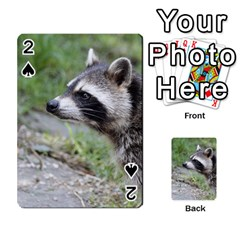 Racoon 1115 Playing Cards 54 Designs  by MoreColorsinLife