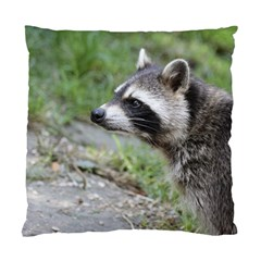 Racoon 1115 Standard Cushion Cases (two Sides)  by MoreColorsinLife