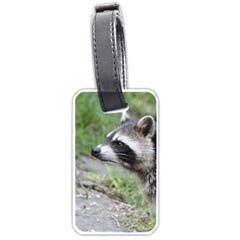 Racoon 1115 Luggage Tags (one Side)  by MoreColorsinLife