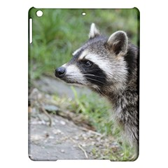 Racoon 1115 Ipad Air Hardshell Cases by MoreColorsinLife