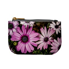 Beautiful Colourful African Daisies  Mini Coin Purses by OZMedia