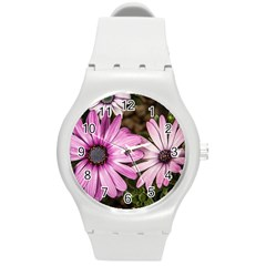 Beautiful Colourful African Daisies  Round Plastic Sport Watch (m) by OZMedia