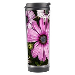 Beautiful Colourful African Daisies  Travel Tumblers by OZMedia