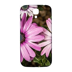 Beautiful Colourful African Daisies  Samsung Galaxy S4 I9500/i9505  Hardshell Back Case by OZMedia