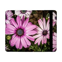 Beautiful Colourful African Daisies  Samsung Galaxy Tab Pro 8 4  Flip Case