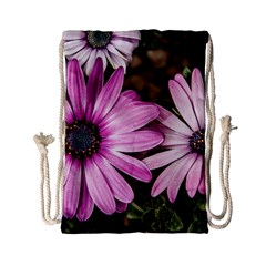 Beautiful Colourful African Daisies  Drawstring Bag (small) by OZMedia