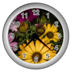 Beautiful Colourful African Daisies  Wall Clocks (silver)