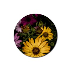 Beautiful Colourful African Daisies  Rubber Coaster (round)  by OZMedia
