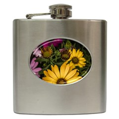 Beautiful Colourful African Daisies  Hip Flask (6 Oz) by OZMedia