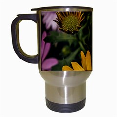 Beautiful Colourful African Daisies  Travel Mugs (white) by OZMedia