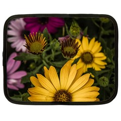 Beautiful Colourful African Daisies  Netbook Case (xxl)  by OZMedia