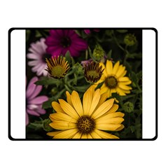Beautiful Colourful African Daisies  Fleece Blanket (small) by OZMedia