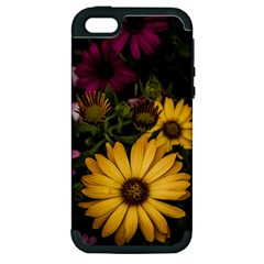 Beautiful Colourful African Daisies  Apple Iphone 5 Hardshell Case (pc+silicone) by OZMedia