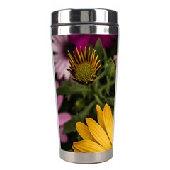 Beautiful Colourful African Daisies  Stainless Steel Travel Tumblers by OZMedia