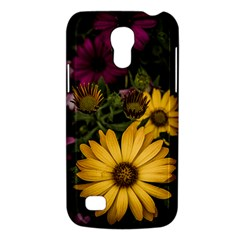 Beautiful Colourful African Daisies  Galaxy S4 Mini by OZMedia