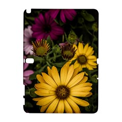 Beautiful Colourful African Daisies  Samsung Galaxy Note 10 1 (p600) Hardshell Case by OZMedia