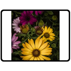 Beautiful Colourful African Daisies  Double Sided Fleece Blanket (large)  by OZMedia