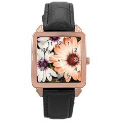 Beautiful Colourful African Daisies Rose Gold Watches by OZMedia
