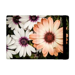 Beautiful Colourful African Daisies Ipad Mini 2 Flip Cases