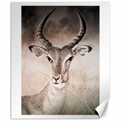 Antelope Horns Canvas 20  X 24   by TwoFriendsGallery