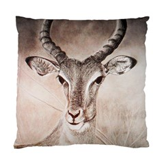 Antelope Horns Standard Cushion Case (one Side)  by TwoFriendsGallery